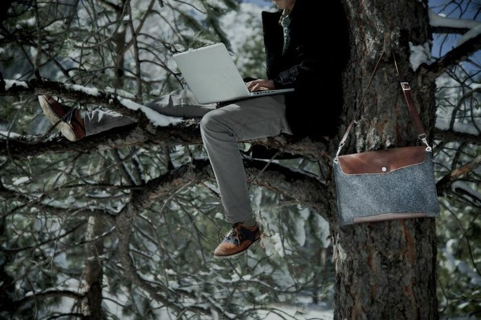 Aurora laptop case